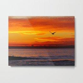 Winter Gull At Sunset Metal Print