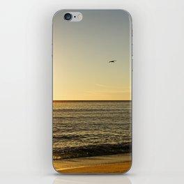 Malibu II iPhone Skin