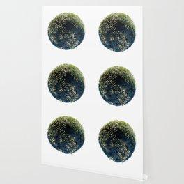 Planet #005 Wallpaper