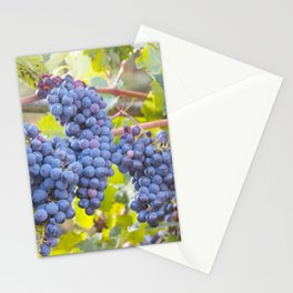 Grapes in Tuscany Stationery Cards