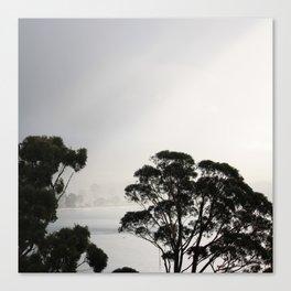 Sawdust Road, Adventure Bay, Bruny Island. Canvas Print