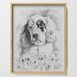 English Setter puppy Black and white portrait Serving Tray