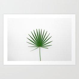 palmera - Palm tree Art Print