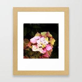 flower2 Framed Art Print