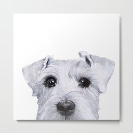 Schnauzer White Dog original painting print Metal Print