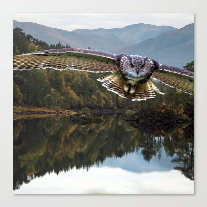 The Cry of the Owl Canvas Print