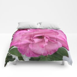 Bodacious Pink Rose | Large Pink Flower | Nature Photography Comforters