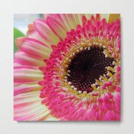 Pink Neon Germini Close Up Metal Print