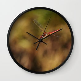Red dragonfly flying Wall Clock
