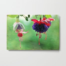 Flashy Fuchsias Metal Print