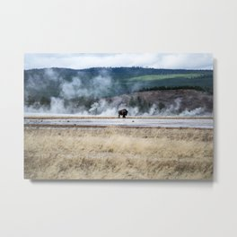 First on the Frontier Metal Print