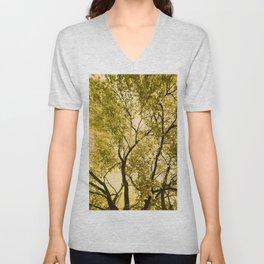 Beech Tree In Spring Unisex V-Neck