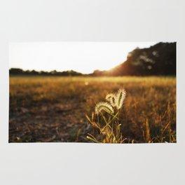 Golden Sunset Rug