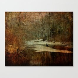 Mysterious Bashakill Channel Canvas Print