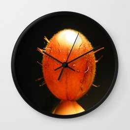 Red Earth Wall Clock