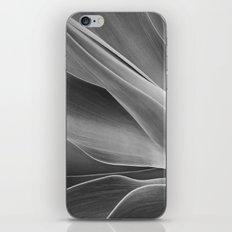 Mono Agave Attenuata iPhone & iPod Skin