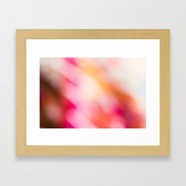Pink Colours Framed Art Print