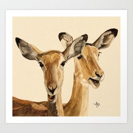 Impalas Watercolor Art Print