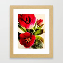 Tribute To Mothers Framed Art Print