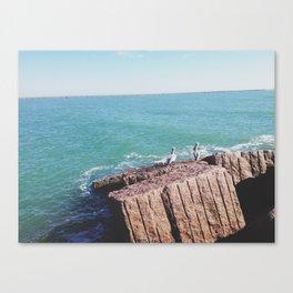 009 Canvas Print