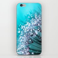 morning iPhone & iPod Skins featuring Morning Glory by Joke Vermeer