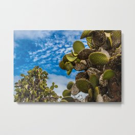 Cactus In the Sky Metal Print