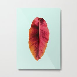 Banana Leaf Metal Print