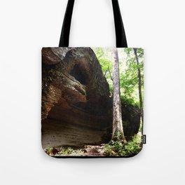 The Desolate Hideout Tote Bag