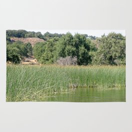 Reed Shore Rug