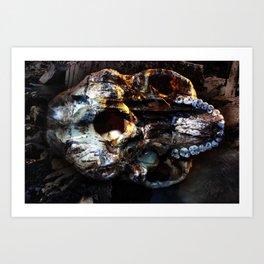Buffalo Point Art Print