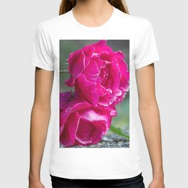 Lying roses covered by raindrops T-shirt