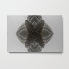SDM 1011 (Symmetry Series) Metal Print