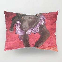 Kira 3 Pillow Sham