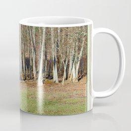 Meadow's Edge Along an Alder Woodlot Coffee Mug