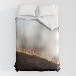 A New Beginning Comforters