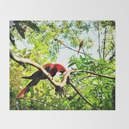 Endangered Trio of Scarlet Macaws Throw Blanket