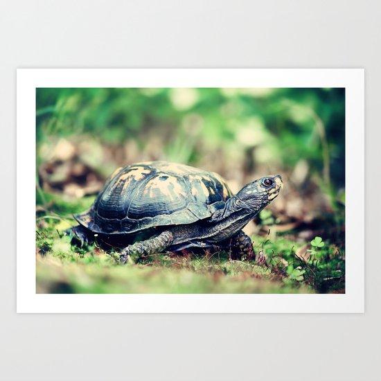 Slowpoke Art Print