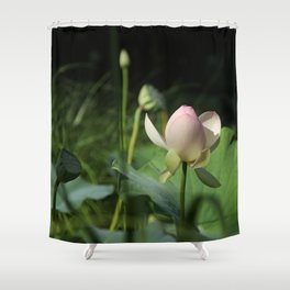 In Delicate Pinks Shower Curtain