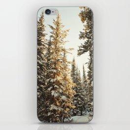 Snowy Pine Trees Glowing in Sunlight iPhone Skin