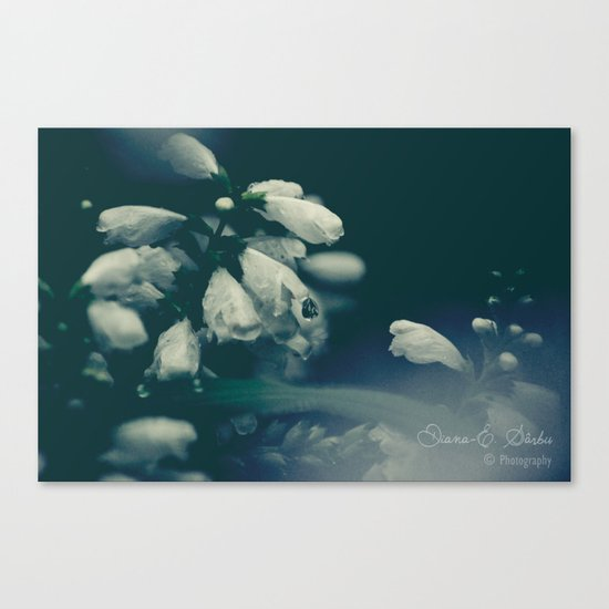 Curses of the forest Canvas Print