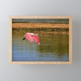 The Flyover Framed Mini Art Print
