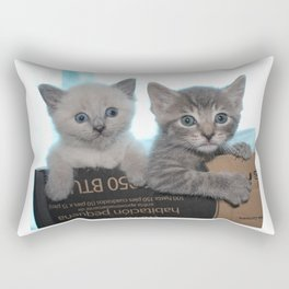 Kittens in a Box Rectangular Pillow