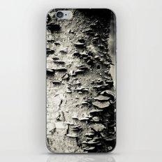 Study In Nature iPhone & iPod Skin