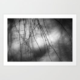for a while Art Print