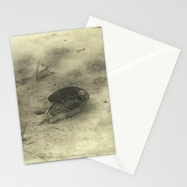 Crab on Beach Stationery Cards
