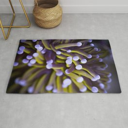 Coral Euphylia Golden Torch Rug