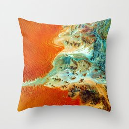 The Oasis (Color) Throw Pillow