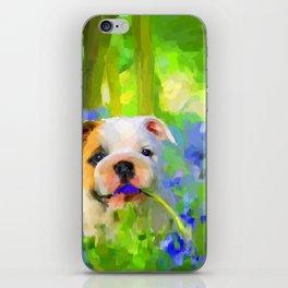 Bulldog and Bluebells iPhone Skin
