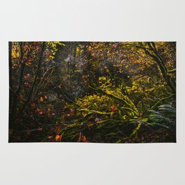 Oregon Forest III Rug