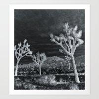 Joshua Tree InfraRed by CREYES Art Print
